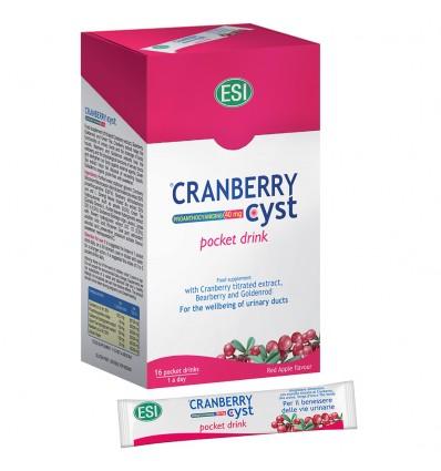 ESI Geriamieji pakeliai su spanguolių ekstraktu CRANBERRY CYST, 16x20 ml